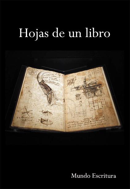 libro Hojas de un libro