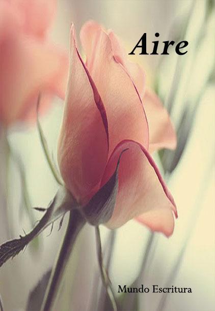 libro Aire