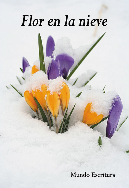 libro Flor en la nieve